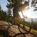 On the southwest side of Whistler Mountain the trail gets plenty of late-afternoon sunlight. - Mountain Biking in British Columbia