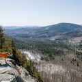 Dogs are welcome on the Boulder Loop Trail.- Incredible Adventures in New Hampshire's White Mountain National Forest