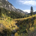 The fall is a great time to enjoy Cardiff Fork.- 5 Ways to Experience Autumn in Utah