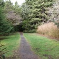 One of the trailheads leading to the ocean from the Carl G. Washburne Memorial State Park campground.- A Guide to Camping on the Central Oregon Coast