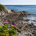 There are plenty of beautiful views of the ocean along the Cliff Walk.- 5 Great American Summer Road Trips