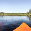 Heading north on the Deer River Flow.- Three Adirondack Paddling Adventures for your Bucket List