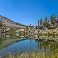 Dollar Lake near the scenic Rae Lakes Basin along the John Muir Trail.- Groves, riots, and Sundry Summer Flora Assemblies
