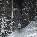 Enjoying a winter hike to Donut Falls.- 5 Great Snowshoe Trails Near Salt Lake City