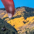 Paraglider coming in for a landing near the East Aspen Bike Trail along Highway 82.- The Best Leaf-Peeping Adventures for Fall Foliage