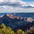 The Grand Canyon and distant snowy peaks seen from Transept Trail.- The Ultimate Western National Parks Road Trip