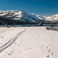 Donner Memorial State Park.- Northern California Winter Road Trip