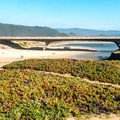 Looking back at Highway 1 from the Pescadero bluff.- California's Best Beaches