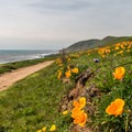 Harmony Headlands State Park, San Luis Obispo.- Best Adventure Towns in California