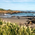 Looking south along Estero Bluffs State Park.- The Best of San Luis Obispo