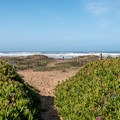 Morro Strand State Beach.- The Best of San Luis Obispo