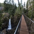 Few from the far side of the bridge at Drift Creek Falls.- Exploring Oregon's Coastal Waterfalls