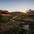 A freshwater spring near Furlong Lake.- Ruby Mountains Wilderness