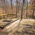 Some campsites at the Chicot State Park Campground come equipped with a deck overlooking the forest. - Adventurer's Guide to Central Louisiana