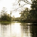 Paddling in the late afternoon light along Southern Louisiana's Cane Bayou.- Adventurer's Guide to Southern Louisiana