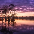Lake Bruin State Park, Louisiana.- Outdoor Project's Best Photos of 2018