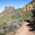 Hiking Pinnacles Trail in Chisos Basin.- Big Bend National Park