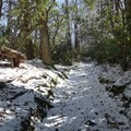 Expect snow in the winter at higher elevations.- Great Smoky Mountains National Park