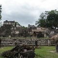 North Acropolis in Tikal National Park.- Add a Stamp to Your Passport