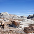 Blue Mesa in Petrified Forest National Park.- Underrated U.S. National Parks You Must See
