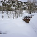 Creek crossing en route to Upper Fish Creek Falls in Colorado.- 40 Must-Do Winter Adventures