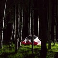 MSR Hubba Hubba NX in the dark aspen forests of Northern Arizona.- Gear Review: 5 Best Backpacking Tents of 2018