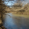 Bayou Macon viewed from the Hard Bottom Trail inside Poverty Point State Park.- 5 Ways to Find Your Louisiana Adventure