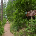 The start of the Mineral Ridge National Scenic Trail.- Best Hikes Near Spokane, Washington