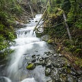 Gatton Creek Falls in the Quinault National Trail System.- 20 Incredible Adventures on the Olympic Peninsula