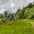 View west from the Prairie Loop Trail in Mount Talbert Nature Park.- Exploring Oregon Watersheds: Adventure Brews