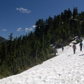 Snow field on the east side of Naches Peak.- 12 Epic Hikes for You and Your Dog in the Pacific Northwest