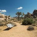 Bench along the Cap Rock Nature Trail.- Best Day Hikes Near Palm Springs