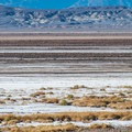 Along the Badwater Basin in Death Valley National Park.- Camping in Death Valley National Park