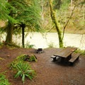 Typical campsite at Hoh Oxbow Campground.- Best Year-round Campgrounds in Washington