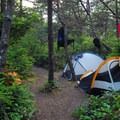 A backcountry campsite on Bayocean Peninsula.- Beach Camping in the West