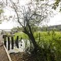 Arboretum Waterfront Trail.- Seattle's 16 Best Kid-Friendly Adventures