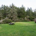 Meadow and picnic tables in the Lodgepole Picnic Area. - Guide to the Oregon Dunes National Recreation Area
