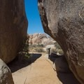 The Cap Rock Nature Trail winding between boulders.- 11 Best Day Hikes in Joshua Tree National Park