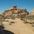 View from the Cap Rock Nature Trail.- 11 Best Day Hikes in Joshua Tree National Park