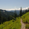 View looking west toward the Tatoosh Range.- 12 Epic Hikes for You and Your Dog in the Pacific Northwest