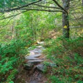 Pack Monadnock Loop.- 6 Must-Do Autumn Adventures in New Hampshire
