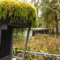A moss-covered pay phone booth at Hoh Rain Forest Visitor Center.- 10 Amazing Day Hikes in Olympic National Park
