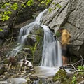 A small waterfall along the Ferguson Canyon Trail.- Twin Peaks Wilderness