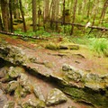 """The exit of """"The Crawl"""" at the Trail of Two Forests.- Exploring Mount St. Helens"""