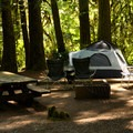 A site in Douglas Fir Campground near the bridge over the North Fork of the Nooksack River.- A Guide To Camping in Washington