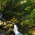 Cascades near Lena Lake.- 10 Amazing Day Hikes in Olympic National Park