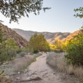The Cedar Creek Falls Trail near San Diego.- Last-Minute Spring Break Ideas