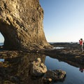 Hole-in-the-wall, Olympic National Park.- Family Friendly Learning On The Olympic Peninsula