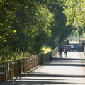 View of the East Lake Sammamish Trail from Lake Sammamish State Park.- State Parks You Can't Miss