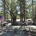 Lobo Group Camp.- Barton Flats Recreation Area